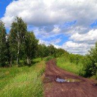 Под небом июля.. :: Андрей Заломленков
