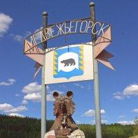 Медвежьегорск под надёжной защитой :: Анжела Пасечник