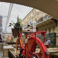 Я буду долго гнать велосипед ... :: Лариса Корженевская
