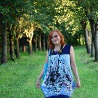 Прогулка по лесу...1 :: донченко александр
