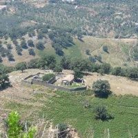 Заброшенный монастырь с высоты 500 м :: Яна Чепик