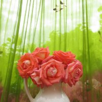 Розы :: Lara