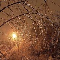 Ледяной мир :: sergej-smv
