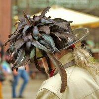 шляпки бывают разные :: Petr Popov