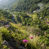 старый шахтерский поселок. :: Евгений Khripp
