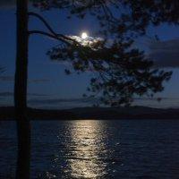 Луна готовится ко сну... :: Дмитрий Петренко
