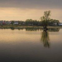Большая вода :: Виктор Четошников