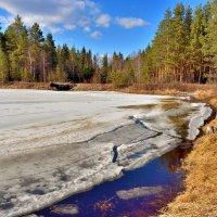 Лёд тронулся! :: Илья Магасумов