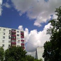 Здравствуй день прекрасный! :: Ольга Кривых