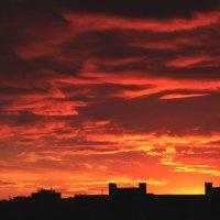 в сто сорок солнц закат пылал, в июль каталось лето.... :: navalon M