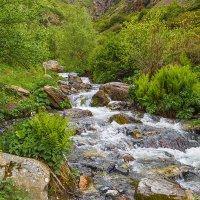 По пути к Гвелетскому водопаду :: Вячеслав Шувалов