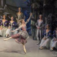 """Сцена из балета """"Лебединое озеро"""" :: Светлана Яковлева"""