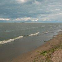 У Финского залива-1 :: Валентина Папилова
