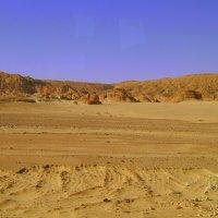 В пустыне Синая :: Марина Домосилецкая