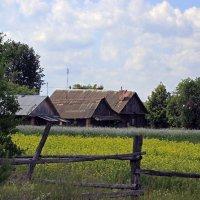 деревенская жизнь :: оксана