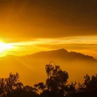 Закат в горах на Шри-Ланке :: Ольга Петруша