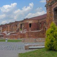 Бресткая крепость :: Светлана Соловьева