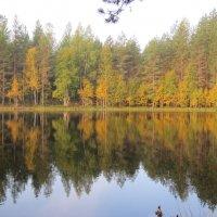 озеро :: Галина