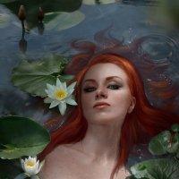 """""""water Lily"""" :: Irina Safronova"""