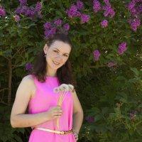Сирень в цвету :: Дарья Мелентьева