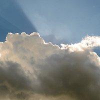 Солнечные лучи :: Алиса Нелеп