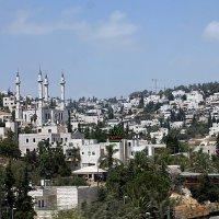 Окресности Иерусалима :: Aleks Ben Israel