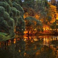 Вечером , у озера. :: Viacheslav Birukov