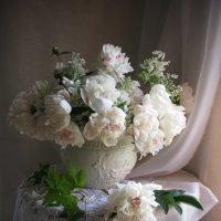 Нежный аромат белых пионов :: Татьяна Ким