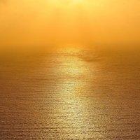 Закат в туманном море :: Konstantin Rohn