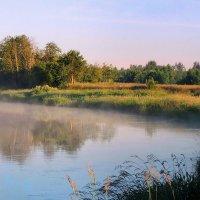 Клубился утренний туман... :: Павлова Татьяна Павлова