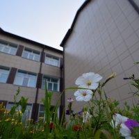 Под зданием сим :: Сергей Шаврин