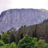 лес,горы,облака :: vg154