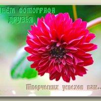 Поздравляю...... :: Юрий Владимирович