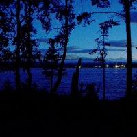 Ночью на берегу озера... :: Дмитрий Петренко