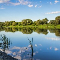Летом на реке :: Юрий Стародубцев