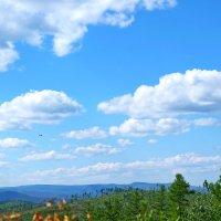 Забайкальское небо :: Елена Фалилеева-Диомидова