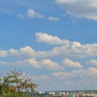 Эстафетацвета. Голубая пятница - мирное небо над Луганском, во всей красе :: Наталья (ShadeNataly) Мельник
