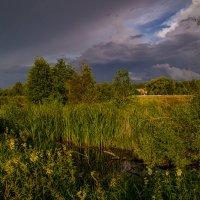 Дождь покапал и прошел 2 :: Андрей Дворников