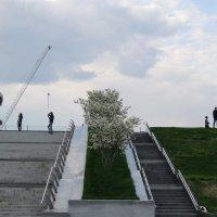 Лестницы Москвы :: Дмитрий Никитин