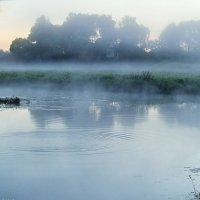 Утро, туман. :: Сергей Ключарёв