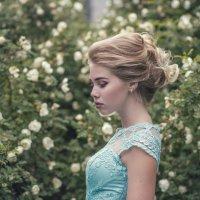 Июльские розы :: Женя Рыжов