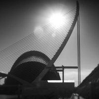Валенсия. Центр Науки и Искусстваю Вид на библиотеку и мост - лиру :: Олег Чемоданов