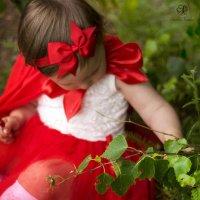 Красная шапочка :: Каролина Савельева