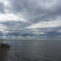 Северодвинск. Прогулка по Летнему берегу Белого моря (2) :: Владимир Шибинский