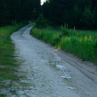 Дорога из жёлтого кирпича :: Алексей Немчинов