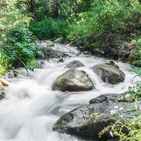 Молочная река, кисельные берега. :: Evgeniy Akhmatov