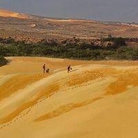 Долгая дорога в дюнах Вьетконга :: Сергей Дабаев