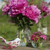 Когда цветут пионы :: Элен .