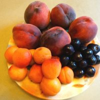 Июльский десерт... :: Тамара (st.tamara)