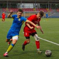 В борьбе за мяч :: Tanyana Zholobova